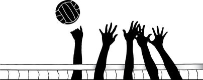 Championnat de France volley-ball